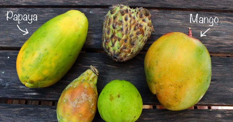 Exotic fruit – part 1.
