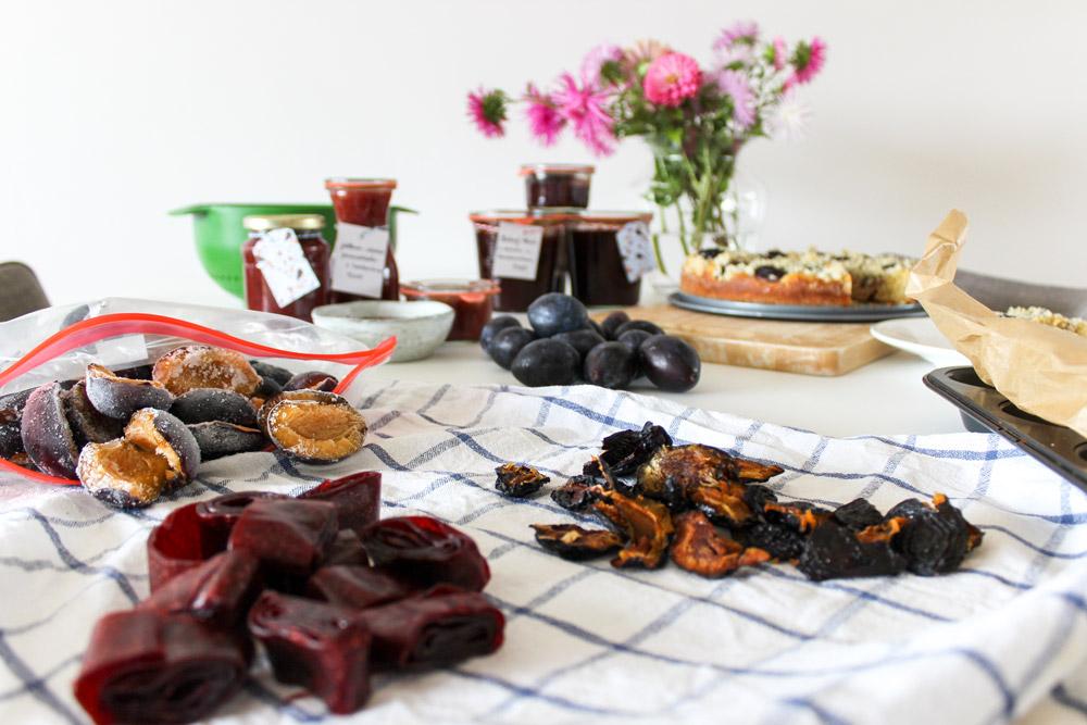 Mrazené, sušené slivky a ovocná koža zo sliviek